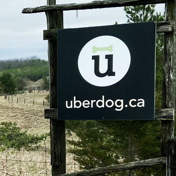 Uberdog The Ranch